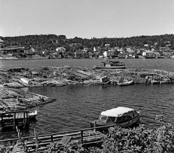 Galtesund 1956