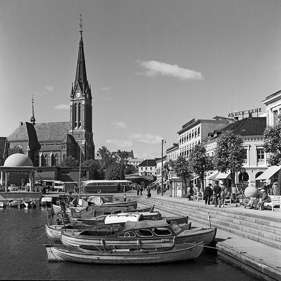 Pollen 1951