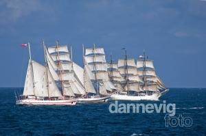 00419Tall_Ship_Race