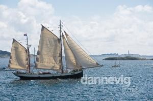 00535_Tall_Ship_Race